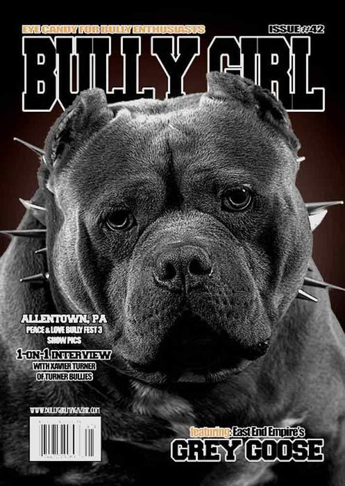 Bully Girl Magazine 1 Year Subscription