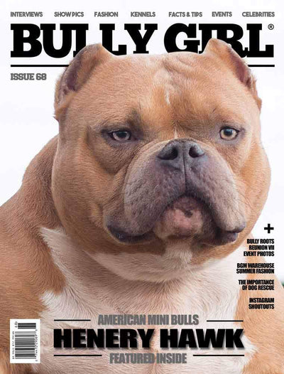 Bully Girl - Digital Issue 68 - BGM Warehouse - The Best Bully Breed Magazines, Clothing and Accessories