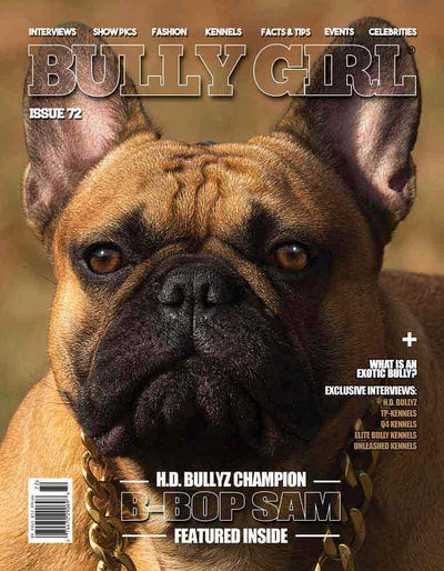 Bully Girl - Digital Issue 72 - BGM Warehouse - The Best Bully Breed Magazines, Clothing and Accessories