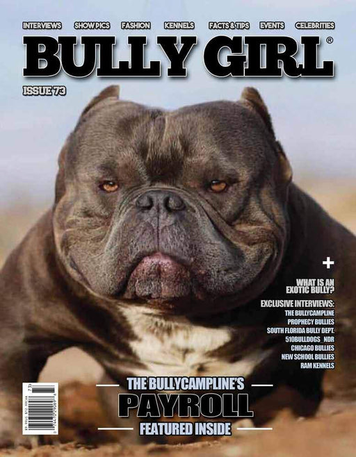 Bully Girl Magazine Issue 73