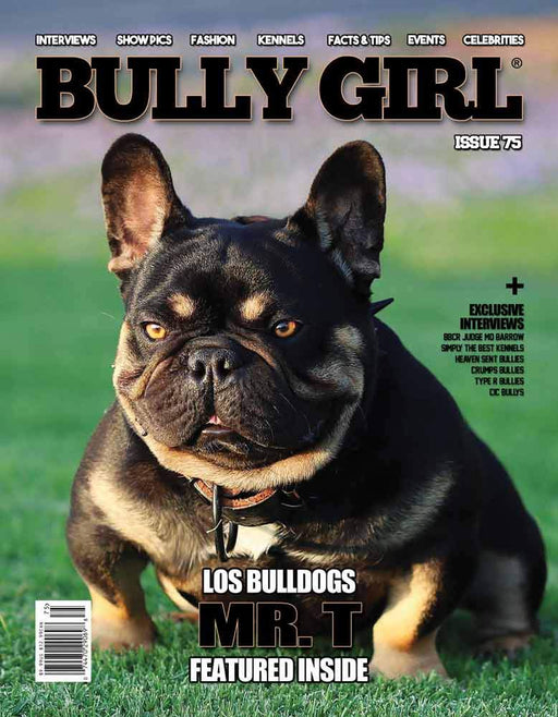 Bully Girl Magazine Issue 75