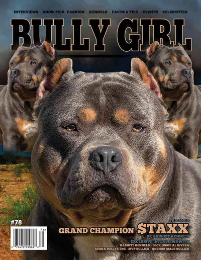 Bully Girl Magazine Issue 78 - BGM Warehouse - The Best Bully Breed Magazines, Clothing and Accessories