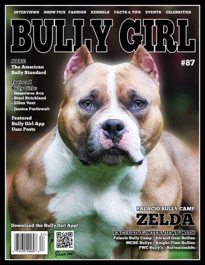 Bully Girl Magazine Issue 87 (LAST COPY) - BGM Warehouse - The Best Bully Breed Magazines, Clothing and Accessories