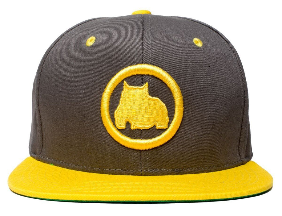 BGM Bully Breed Snapback Cap in Grey and Yellow