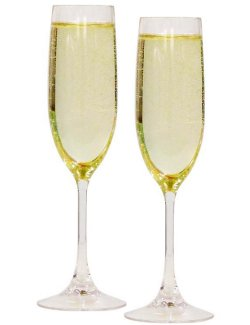 Non-Breakable Connoisseur Champagne Glasses - Nautical Luxuries