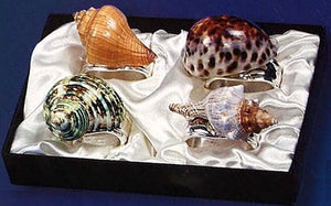 Seashell Melange Napkin Ring Set - Nautical Luxuries