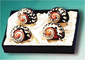 Spiraling Sarmaticus Shell Napkin Ring Set - Nautical Luxuries