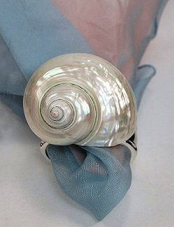 Pearl Turbo Shell Napkin Ring Set - Nautical Luxuries