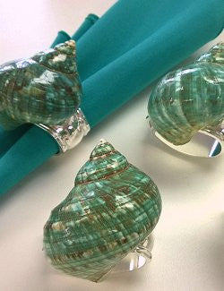 Jade Turbo Shell Napkin Ring Set