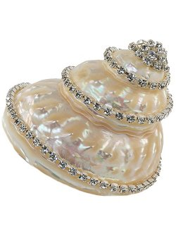 Neptune's Jewels Crystal Shell Collection Astraea Undosa - Nautical Luxuries
