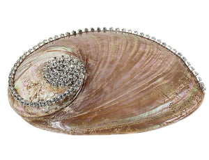 Neptune's Jewels Crystal Shell Collection Pearl Abalone - Nautical Luxuries
