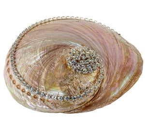 Neptune's Jewels Crystal Shell Collection Pearl Abalone