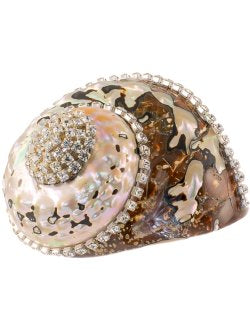 Neptune's Jewels Crystal Shell Collection Turbo Sarmaticus