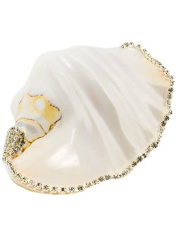 Neptune's Jewels Crystal Shell Collection Strombus