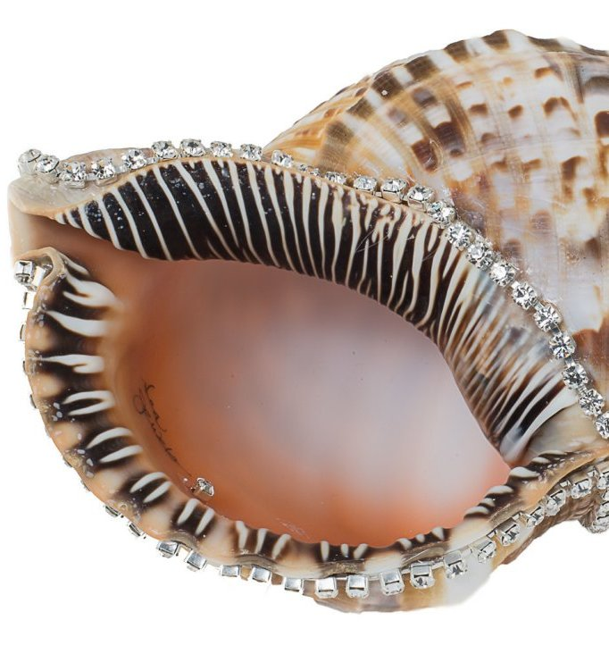 Neptune's Jewels Crystal Shell Collection Triton - Nautical Luxuries