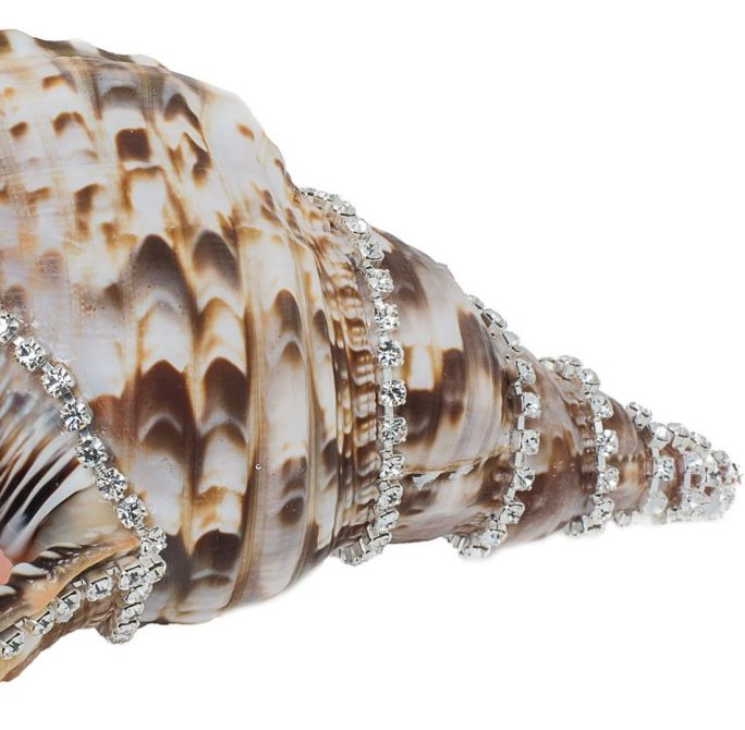 Neptune's Jewels Crystal Shell Collection Triton