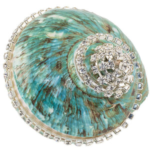 Neptune's Jewels Crystal Shell Collection Turbo Burgess Jade Banded - Nautical Luxuries