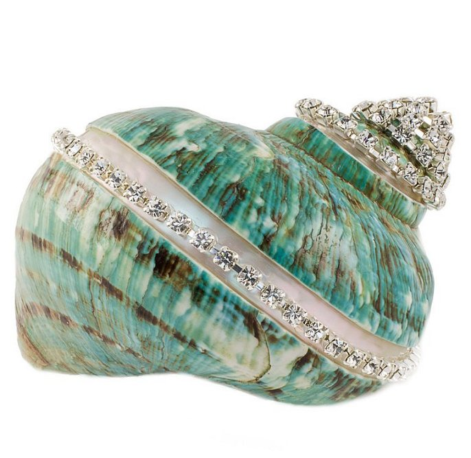 Neptune's Jewels Crystal Shell Collection Turbo Burgess Jade Banded