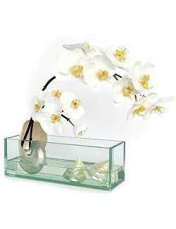 White Orchids With Pearlized Shells Yacht Silks Arrangement