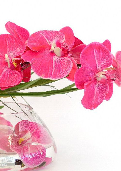 Fuchsia Orchids With Papyrus Yacht Silks Arrangement
