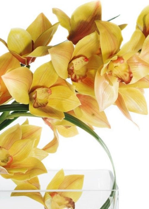 Yellow Orchids With Flax Leaves Yacht Silks Arrangement