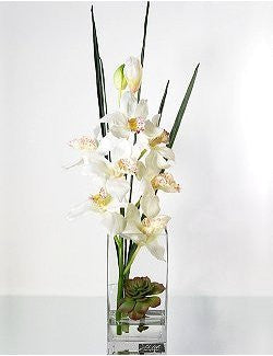 Ivory Cymbidium Orchids Tall Yacht Silks Arrangement - Nautical Luxuries