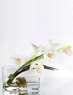 Ivory Cymbidium Orchids With Succulents Yacht Silks Arrangement - Nautical Luxuries