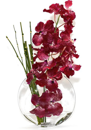Vanda Orchids With Horsetails Yacht Silks Arrangement - Nautical Luxuries