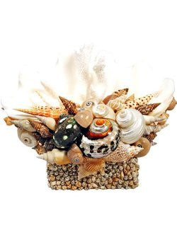 Atlantis Masterpiece Seashell Centerpiece