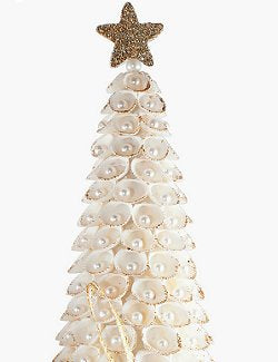 Pearl Gem Clamrose Shell Coastal Tabletop Trees