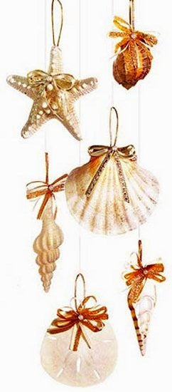 Natural Deep Sea Shells Ornament Set - Nautical Luxuries