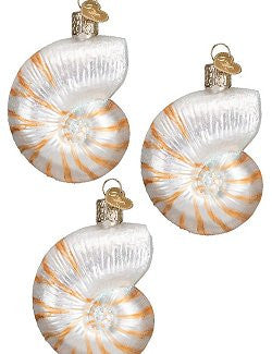 Sparkling Nautilus Shell Glass Ornament Set