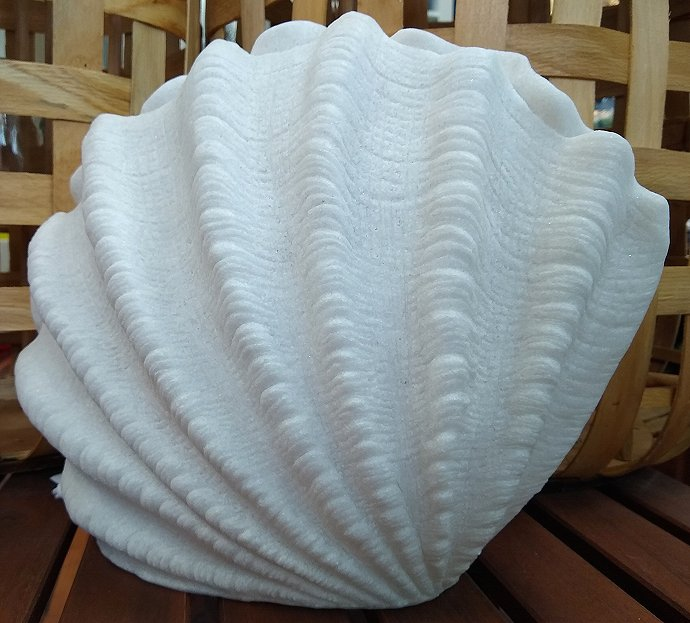 Scallop Shell Translucent Accent Lamp - Nautical Luxuries