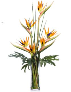 Bird of Paradise & Bamboo Yacht Silks Arrangement - Nautical Luxuries