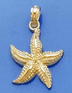 Sanibel Shores Floating Starfish Pendant