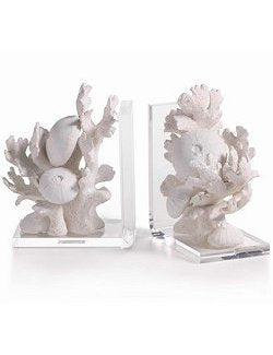 Sun Bleached Sea Life Bookend Set - Nautical Luxuries