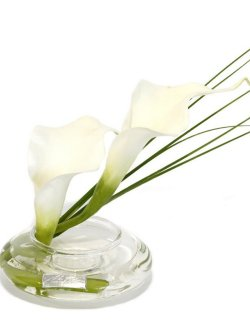 Petite White Calla Lily Blooms Yacht Silks Arrangement