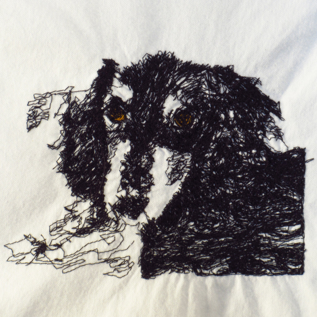 dachshund on cotton towel - last one!