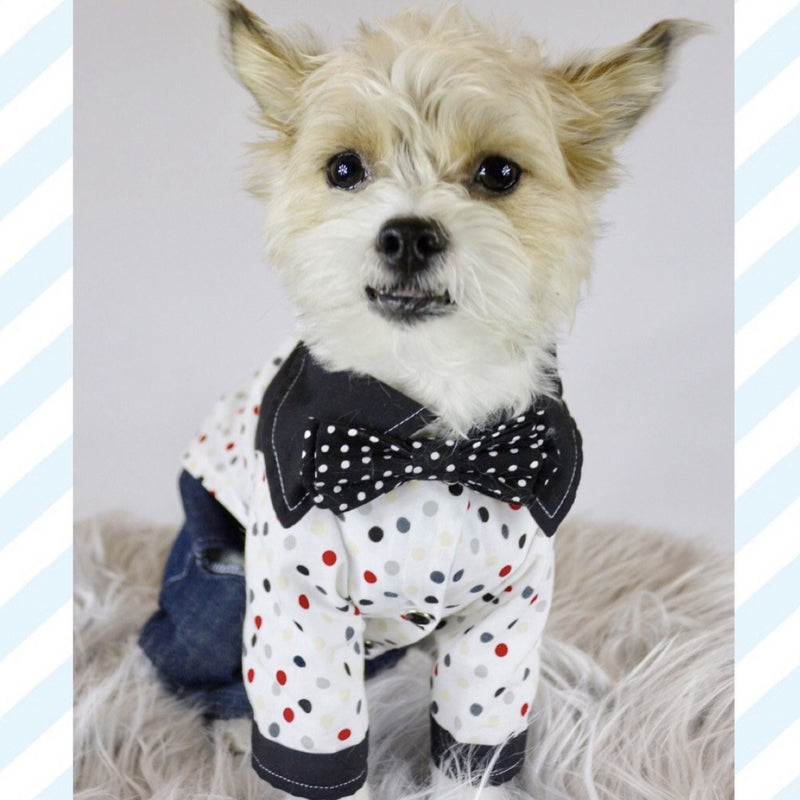 Dapper Dude - The AJ - Ruff Stitched