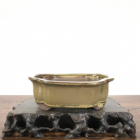 Glazed Mokko Bonsai Pot (8 x 6.3 x 2.8 inches)