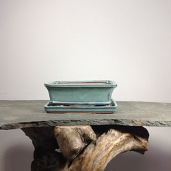 8 x 6 x 2 inch Glazed Rectangle Bonsai Pot
