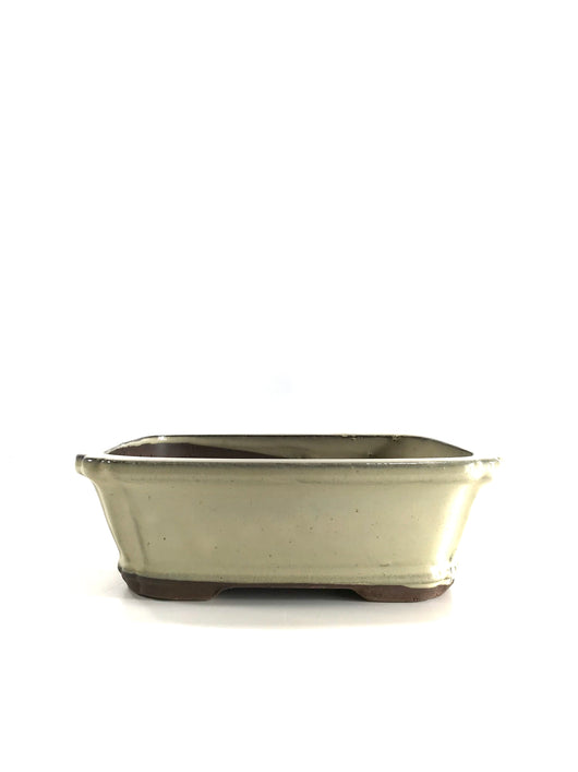 Bonsai Pot (8 x 6 x 2.75 inch)