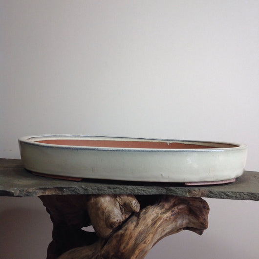 Glazed Oval Bonsai Pots (2 Sizes)