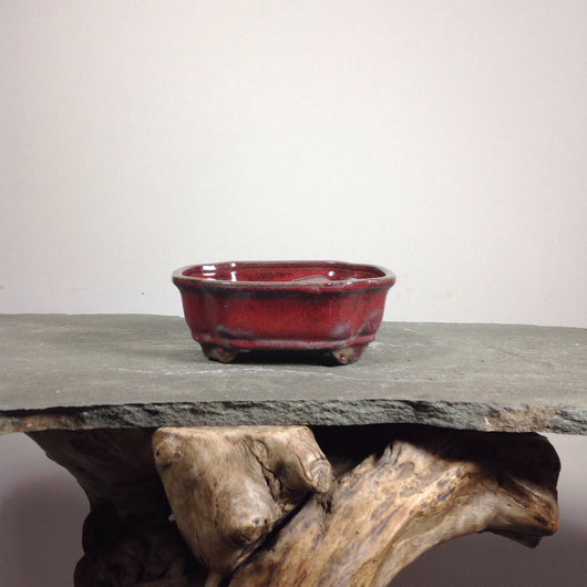 6 x 4.75 x 2.5 inch Glazed Bonsai Pot