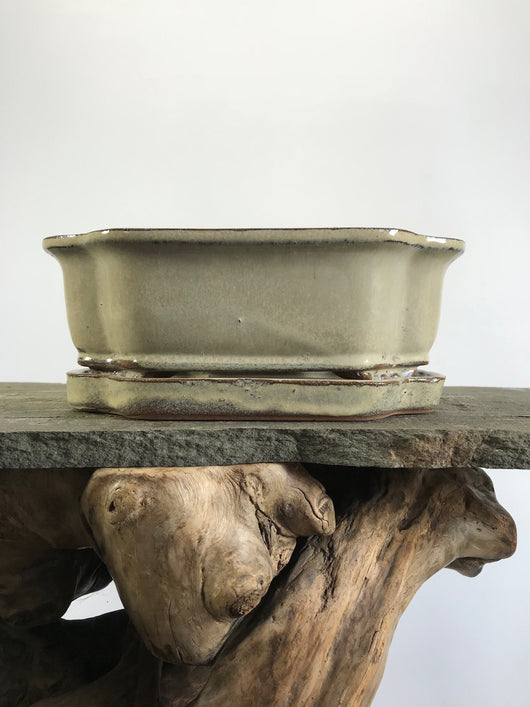 8 x 6 x 2 inch Glazed Mokko Bonsai Pot