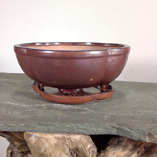 8.5 x 6.25 x 3.5 inch Glazed Bonsai Pot