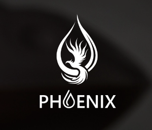 Phoenix Oil : Care for your handpan hang drum tongue drum