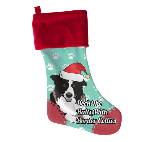 Border Collie, Stockings  | Evan Mila - EvanMila.com