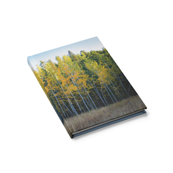 Autumn Trees - Hardcover Blank Journal