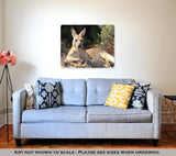 Metal Print - Lazy Kangaroo Days